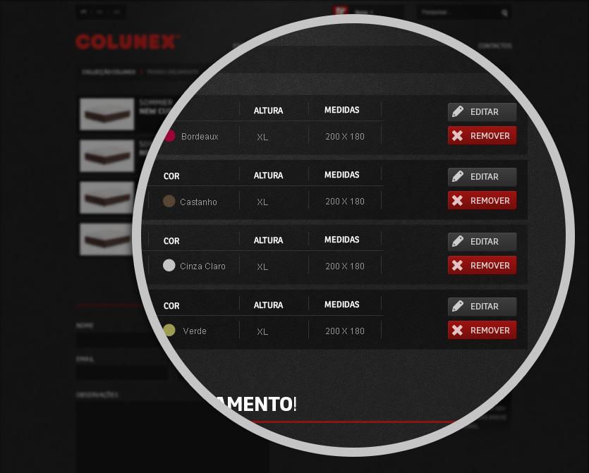 colunex budget zoom Colunex website